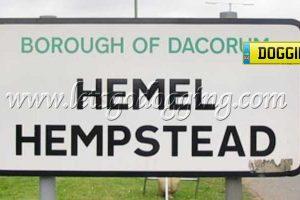 Love Dogging Hemel Hempstead style?