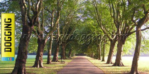 Alvaston Park