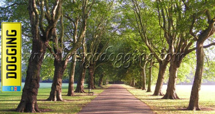 Alvaston Park, DE24