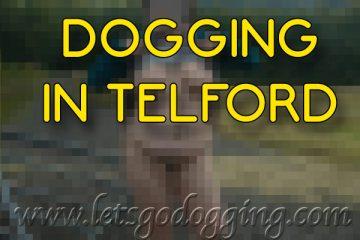 Dogging in Telford.