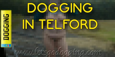 Dogging in Telford.