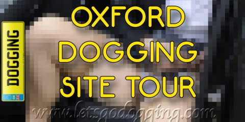 Oxford dogging site