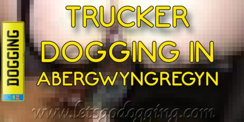 Trucker dogging in Abergwyngregyn