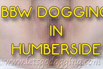 Who wants to watch a BBW dogging in Humberside?