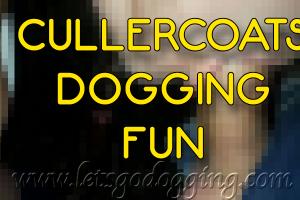Cullercoats dogging fun.