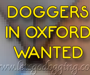 Doggers in Oxford wanted