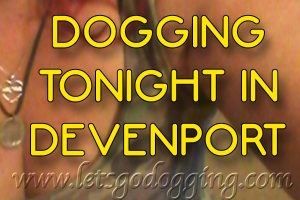 Hands up who would like to go dogging tonight in Devonport