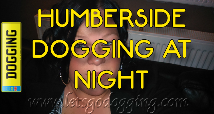 Fancy some Humberside dogging at night