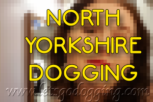 Knaresborough doggers alert
