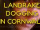The Landrake Dogging scene is alive