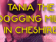 Who goes dogging in Cheshire? Join 40 year old Tania for sex fun