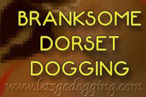 Branksome Dorset dogging