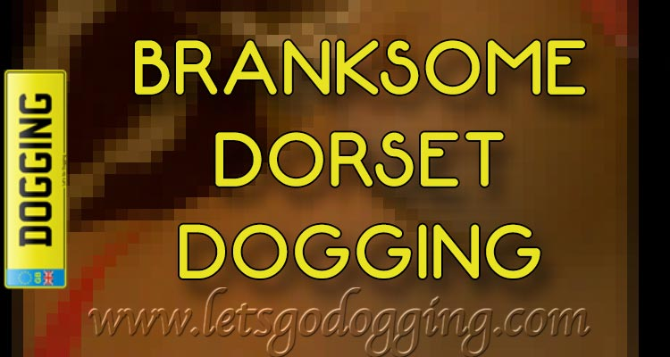 Branksome Dorset dogging with Maxine