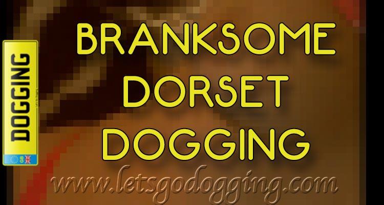 Branksome Dorset dogging with Maxine