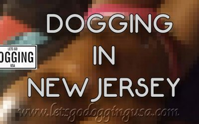 Dogging in New Jersey