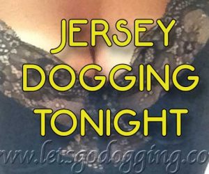 Jersey dogging with lonely Shelley