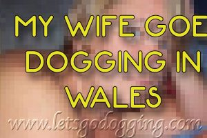 My wife goes dogging in Wales