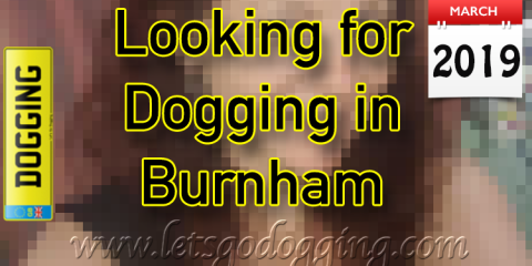 Looking for dogging in Burnham